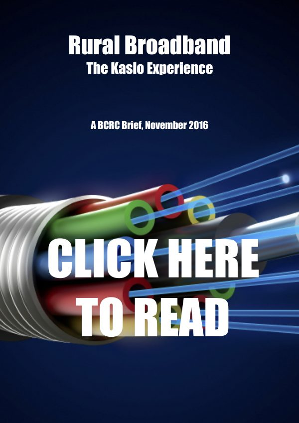 Kaslo InfoNet brings broadband to Kaslo