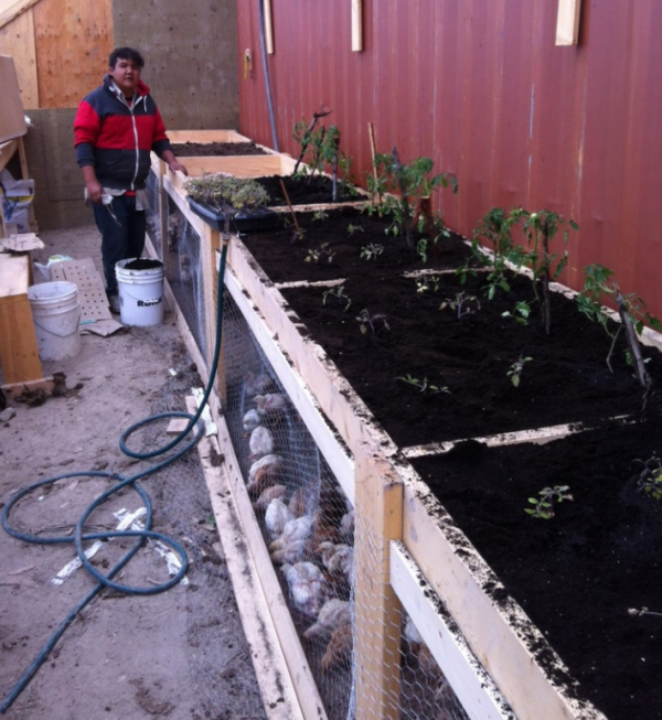 Garden Hill First Nation started growing vegetables
